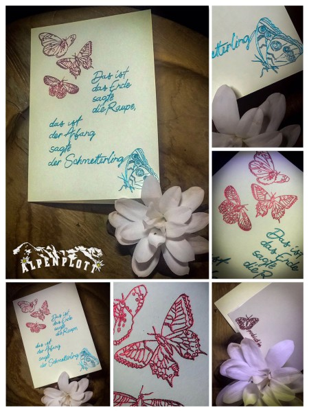 Jasando.ch - Single Line butterfly Letter & Card