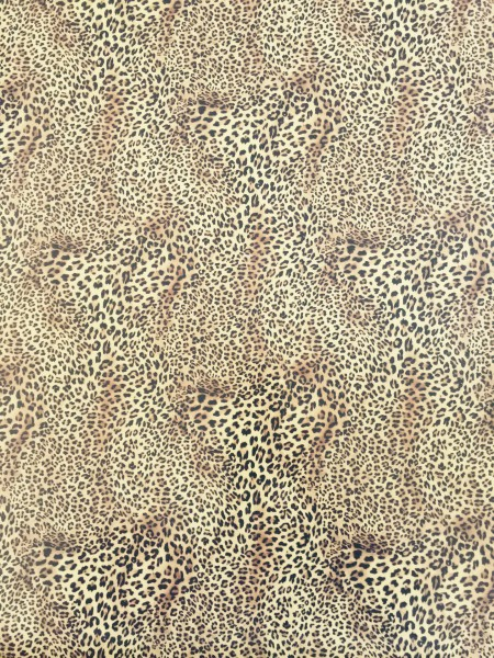 Jasando.ch - Flexfolie leopard
